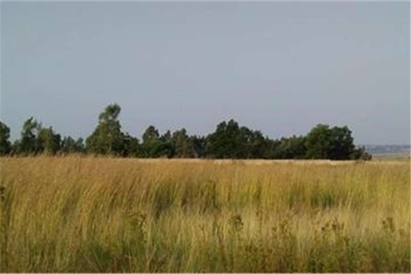 Property Vacant land Vacant Land Residential For Sale in Rayton