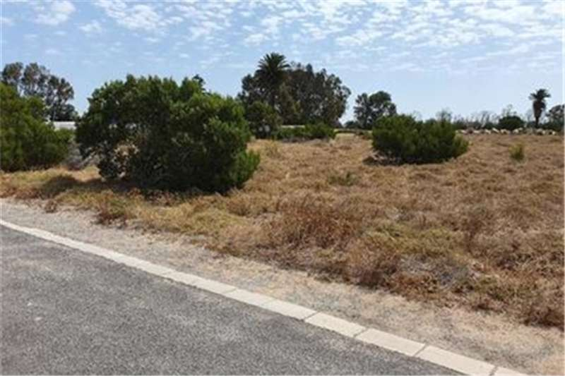 Property Vacant land Vacant Land Residential For Sale in Shelley Point