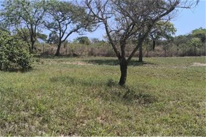 Property Vacant land Vacant Land Residential For Sale in The Rest
