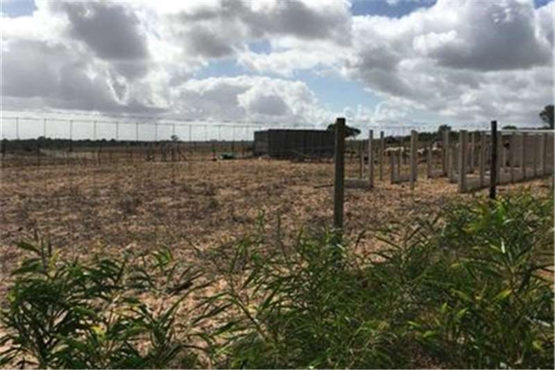Property Vacant land Vacant Land Residential For Sale in Theronville