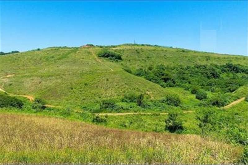 Property Vacant land Vacant Land Residential For Sale in Zimbali