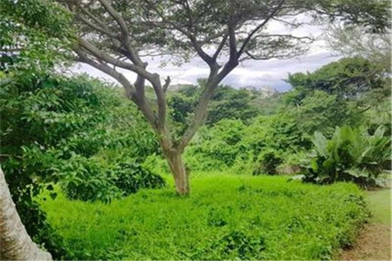 Property Vacant land VACANT STAND FOR SALE IN PRINCE'S GRANT GOLF ESTAT