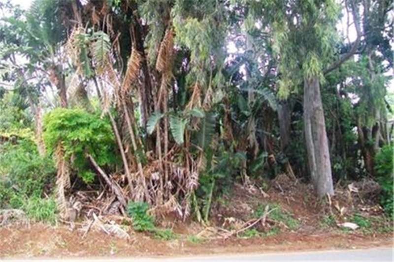 Property Vacant land Vacant Stand in a Quiet Area!