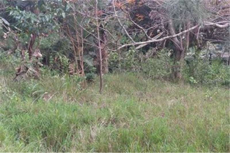 Property Vacant Land Vacant Stand in Pumula!