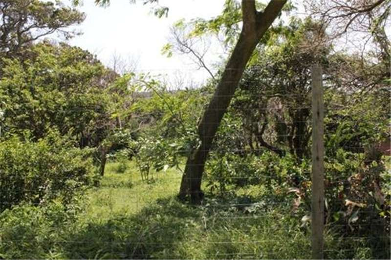 Property Vacant Land Vacant stand with lovely sea view in Umzumbe!