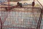 Livestock fencing skaap Hekkies Security and fencing