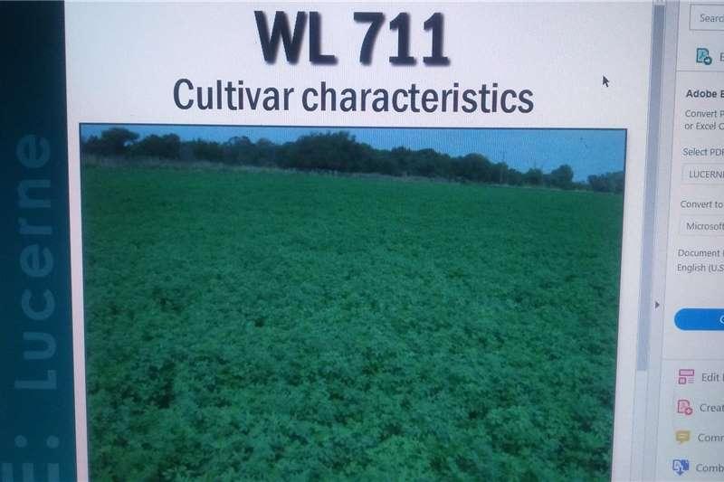 Lucern Seed WL 711 Cultivar Seeds fertilisers and chemicals