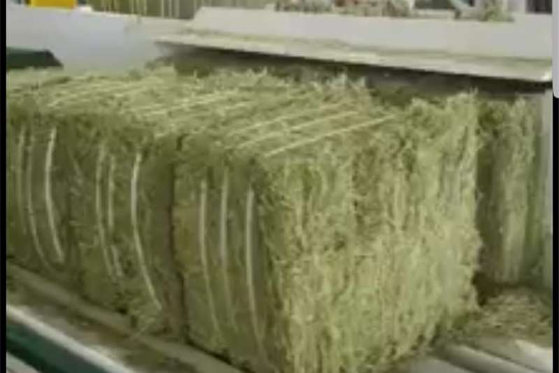 Lucerne Hay Bales Seeds fertilisers and chemicals
