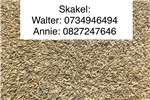 Seeds Barley seed Seeds fertilisers and chemicals