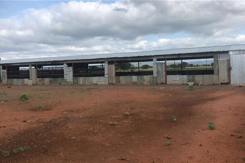 Farm sheds 2x  6m x 30 m chicken   structure Structures and dams