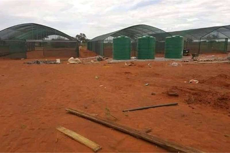 Greenhouses Greenhouse tunnels and chicken houses Structures and dams