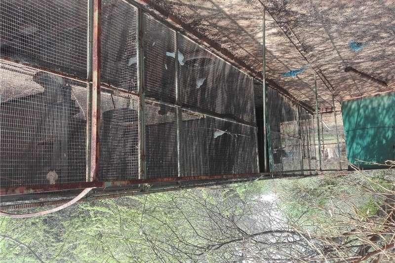 Livestock housing  6 Groot Voel hokke te koop Structures and dams