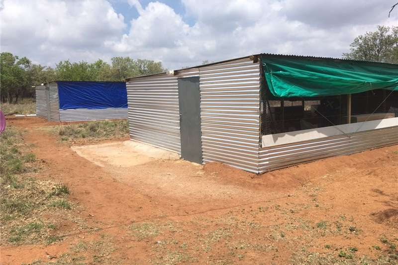 Structures and dams Livestock housing  Building of Chicken Houses from start to finish