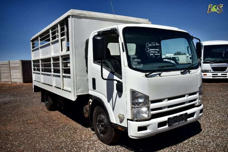 Isuzu Cattle body trucks NQR 500 2011
