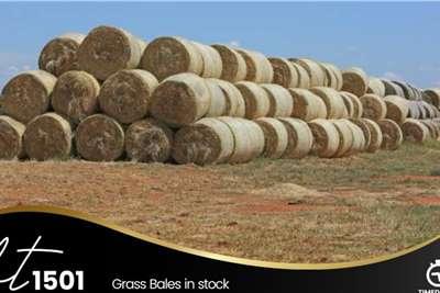 Grass Bales Other